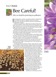 BEE CAREFUL cover