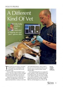 A DIFFERENT KIND OF VET cover