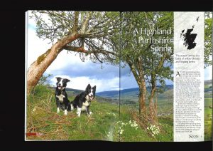 HIGHLAND PERTHSHIRE IN SPRING cover