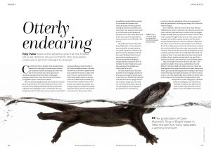 Otterly Endearing cover